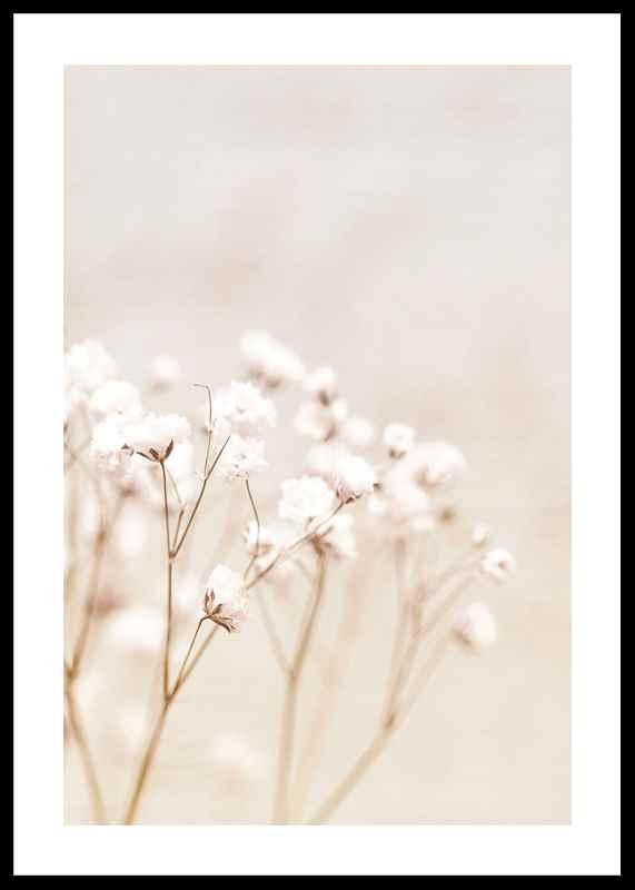 Bright Flowers-0