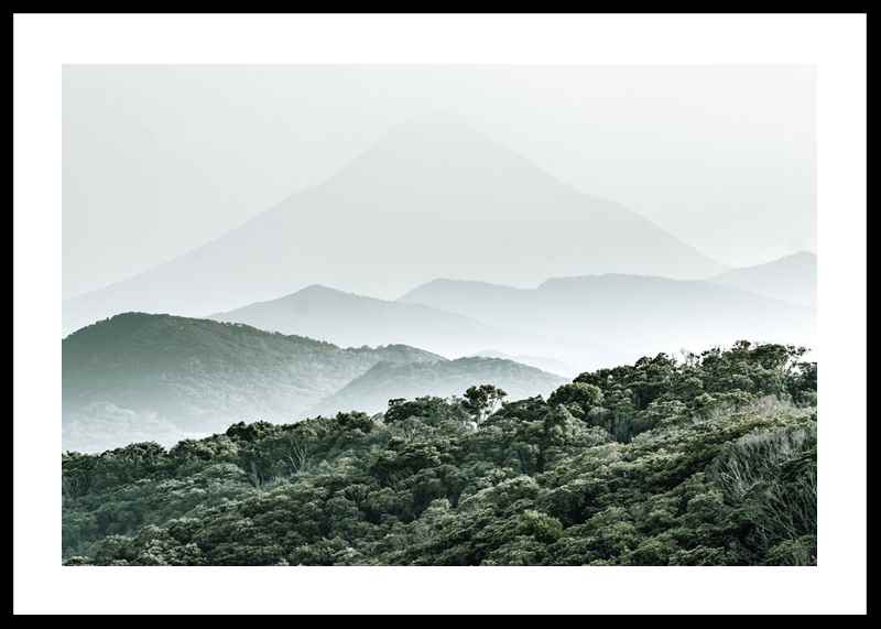 Mountain Forest-0
