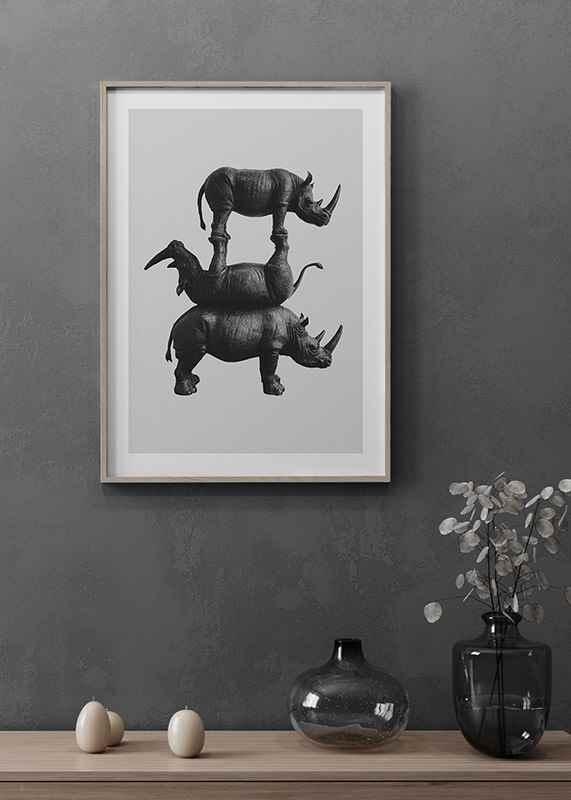 Three Rhinos-4