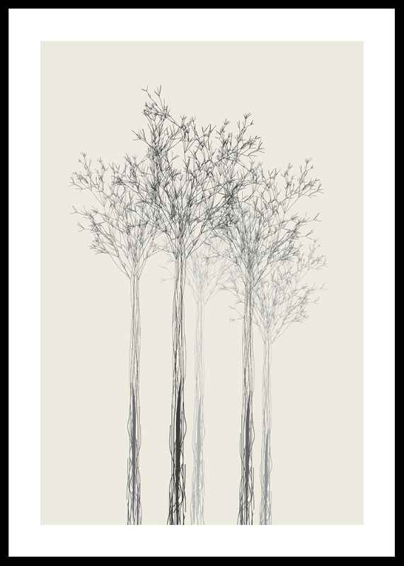 Sketched Trees