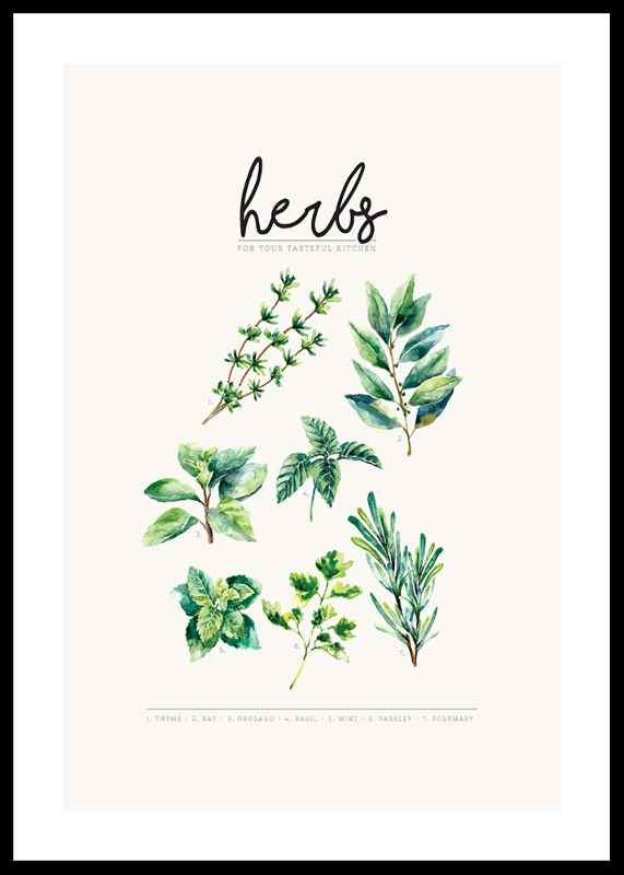 Herbs-0