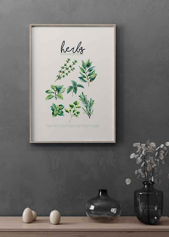Herbs-4