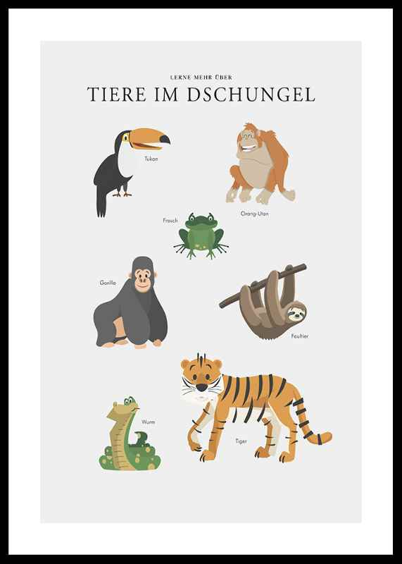 Tiere Im Dschungel-0