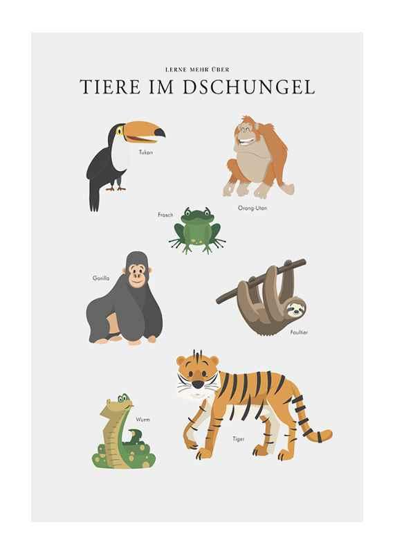 Tiere Im Dschungel-1