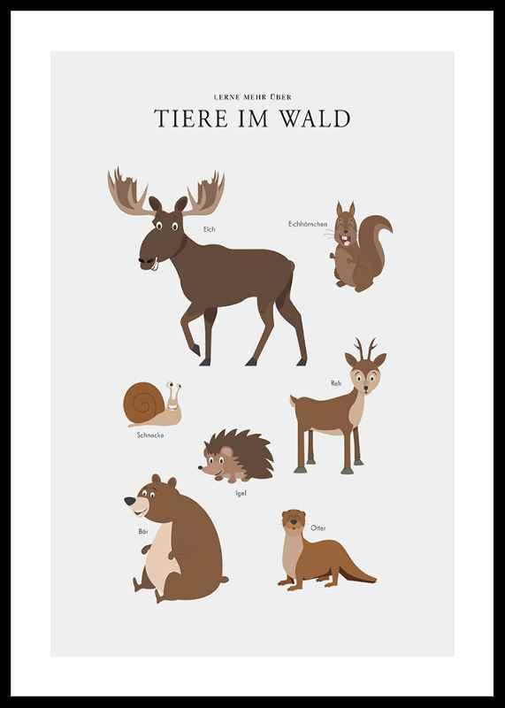 Tiere Im Wald-0