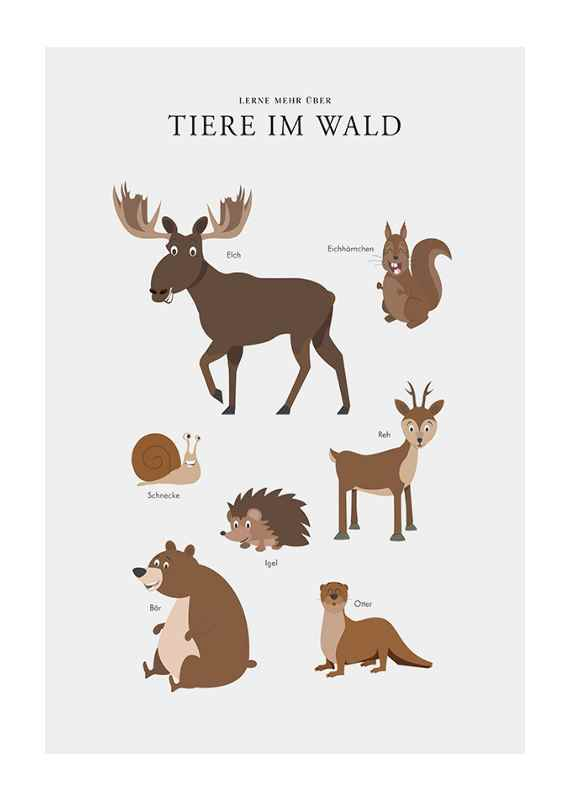 Tiere Im Wald-1