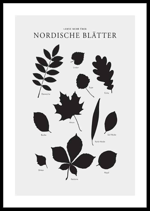 Nordische Blätter