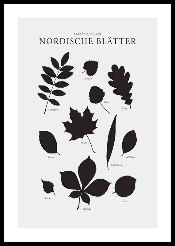 Nordische Blätter-0