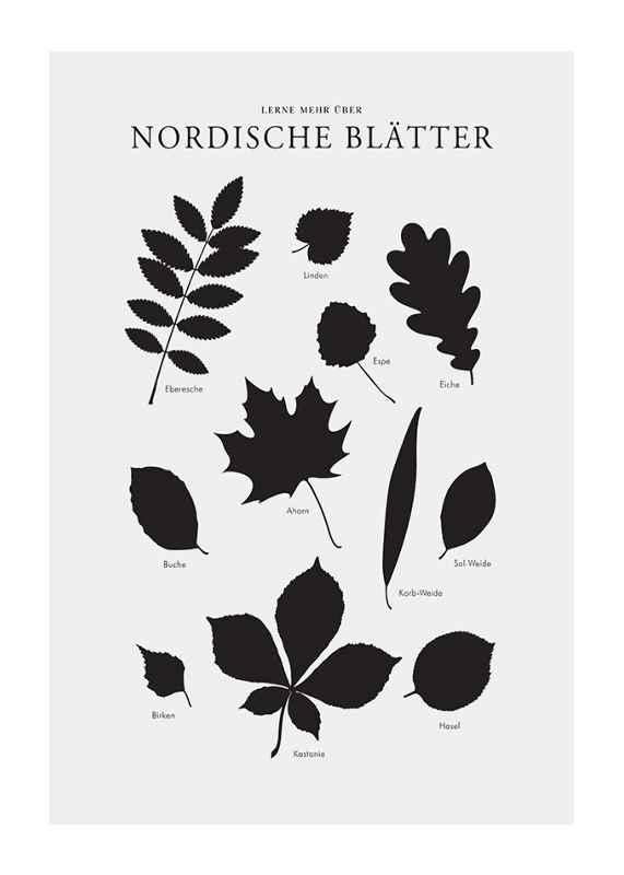 Nordische Blätter-1