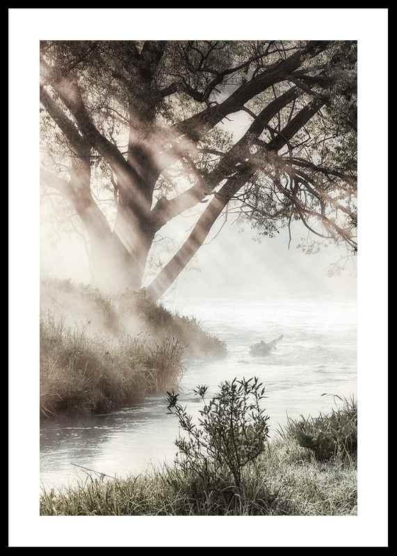 Foggy Dawn-0