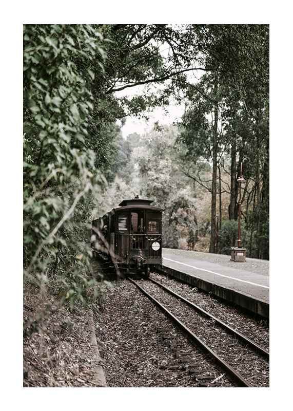 Train By Railroad-1