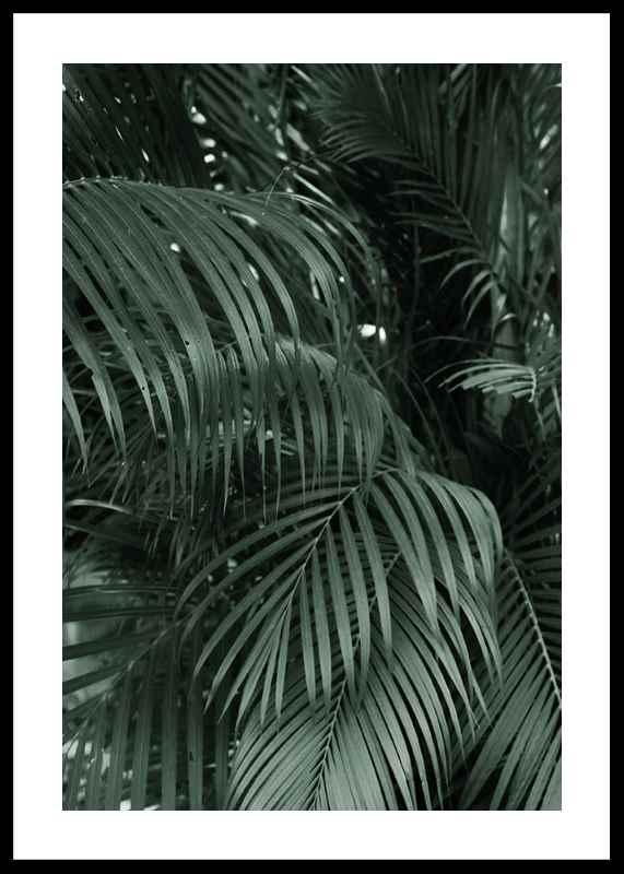 Palm Leaf No2-0
