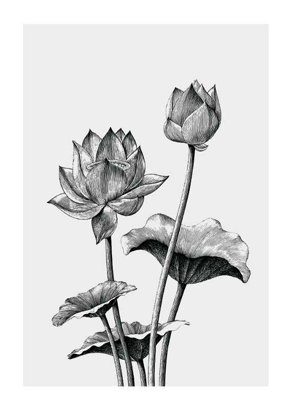 Sketched Flowers-1
