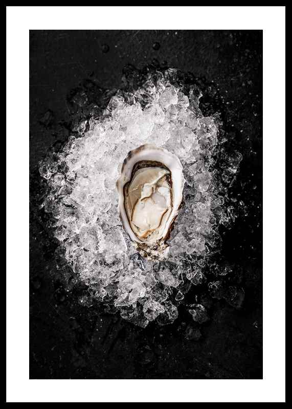 Oyster On Ice-0