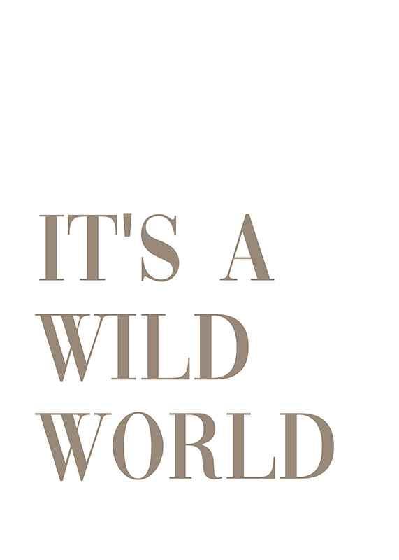 Wild World-1