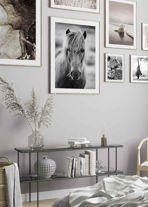 Icelandic Horse B&W-4