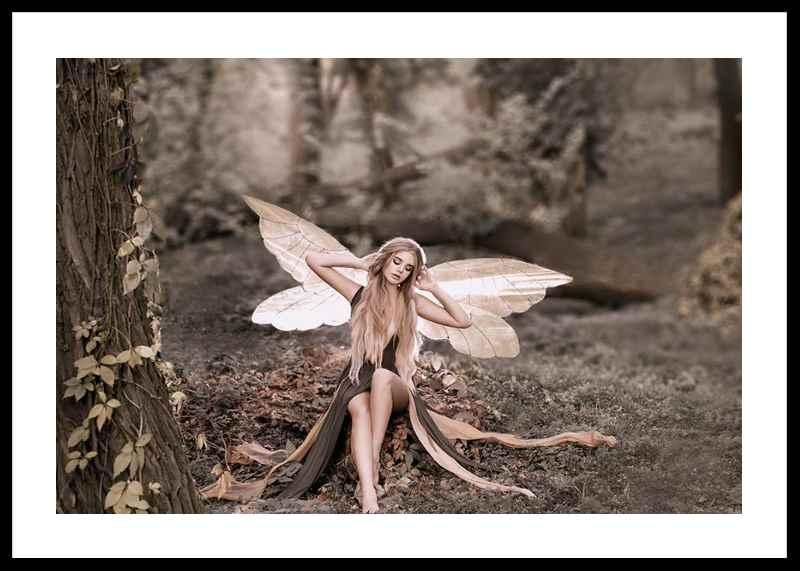 Fairy-0