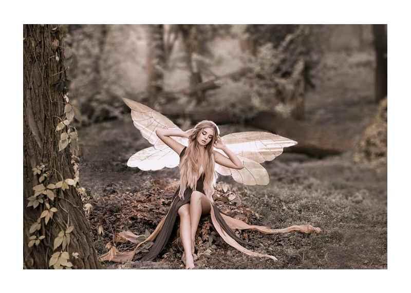Fairy-1