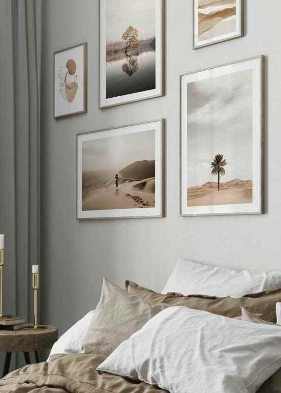 Palm Tree In Desert-4