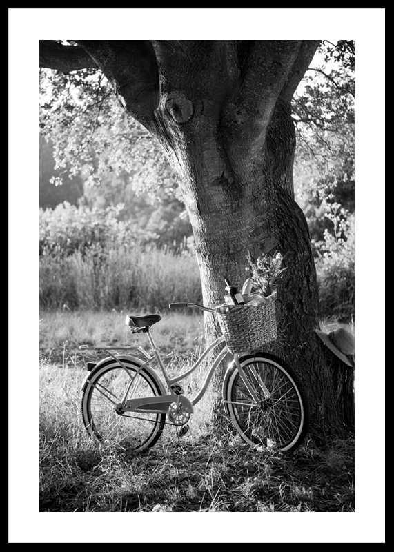 Bicycle With Picknick Basket-0