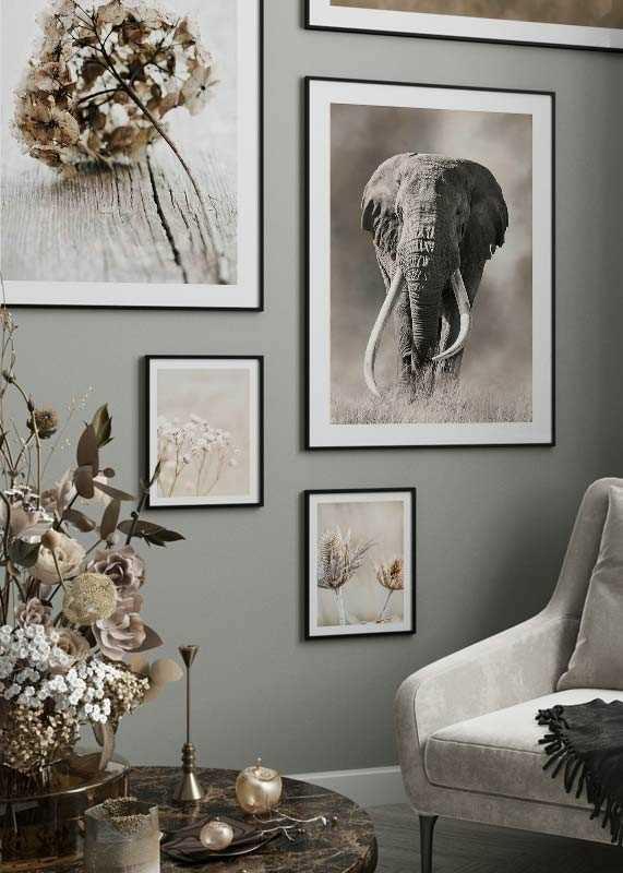 Elephant Tusks-4