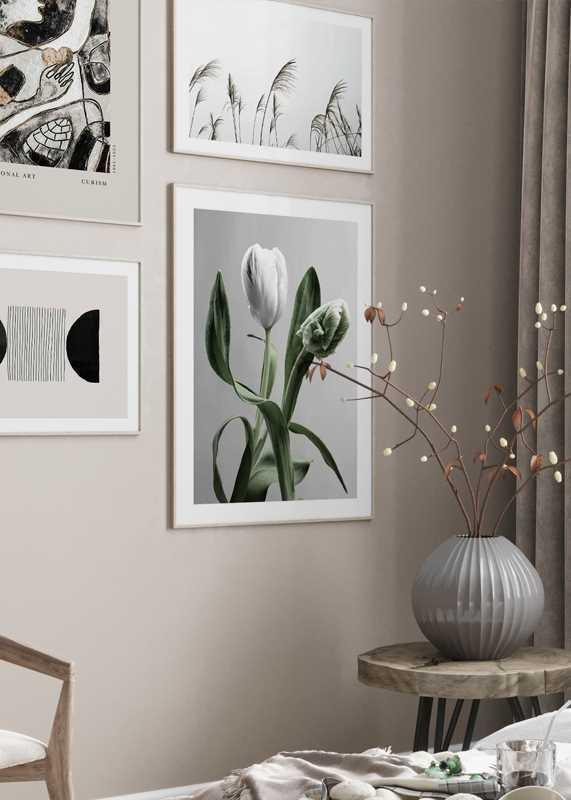 Tulip Flower-4
