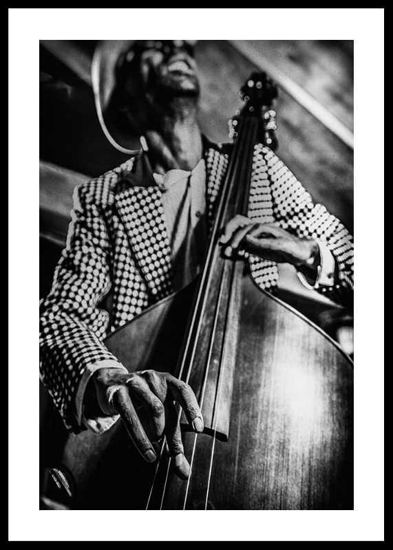 Musician On Bass-0