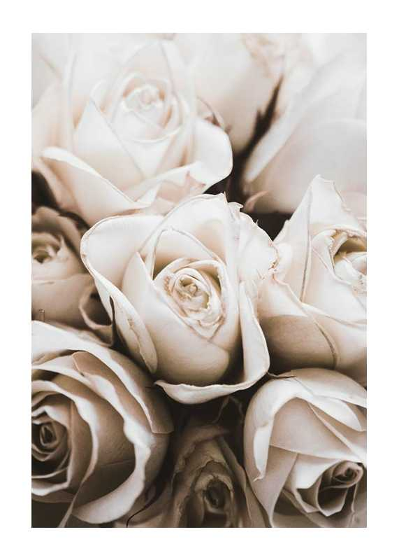 Bouquet Of Roses-1