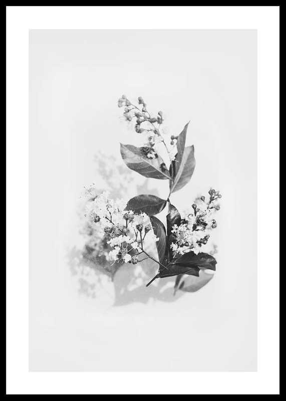 Floral arrangement No2-0