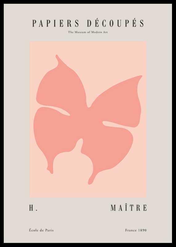 Matisse Papiers Decoupes No3-0
