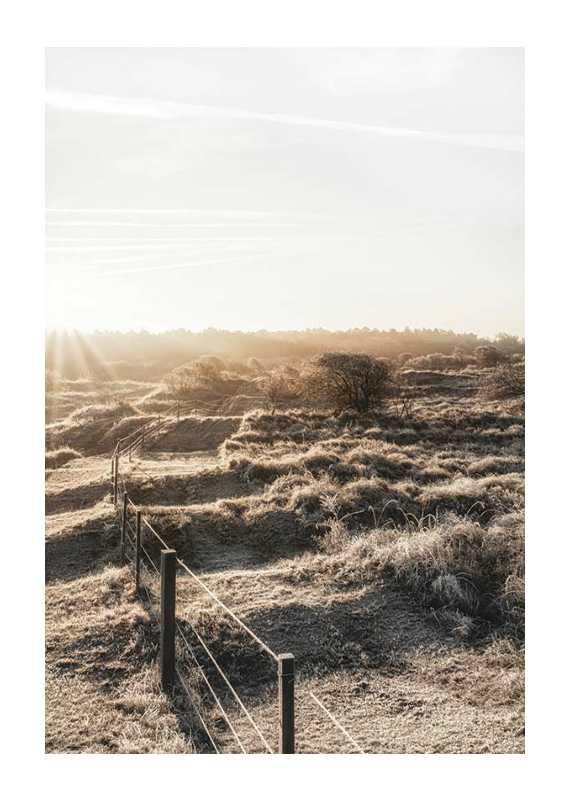 Dutch Landscape-1