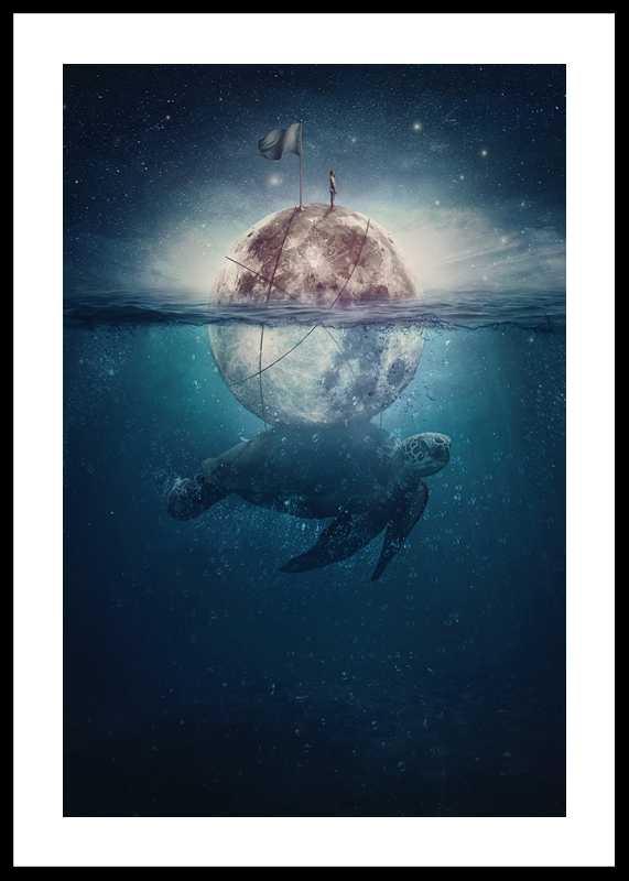 Turtle Moon-0