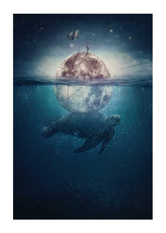 Turtle Moon-1