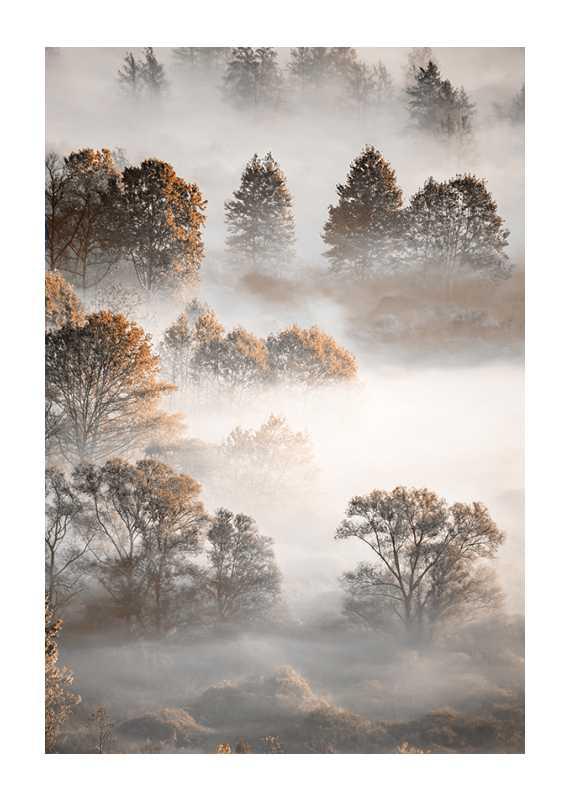 Autumn Forest-1